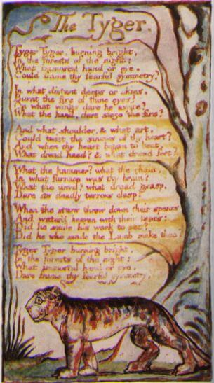 an analysis of the book the tyger by william blake A summary of a classic poem 'the lamb' is one of william blake's 'songs of innocence', and was published in the volume bearing that title in 1789 the equivalent or complementary poem in the later songs of experience (1794) is 'the tyger.